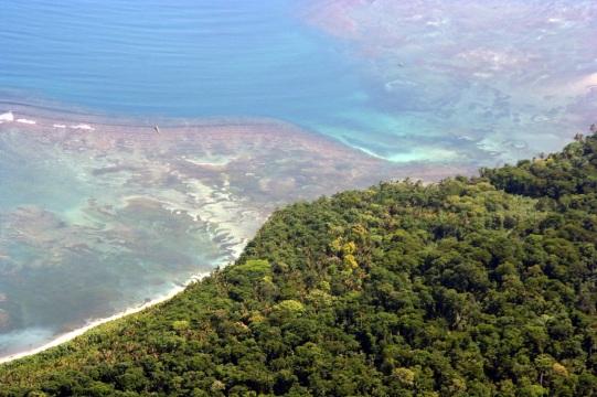 coral reef Cahuita
