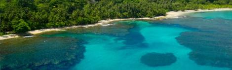 Coral reef Cahuita, CR