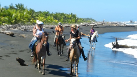 Rio Estrella Riding trek in Cahuita