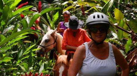 jungle trek in Cahuita