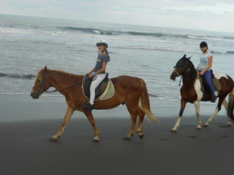 Pony Club 2012