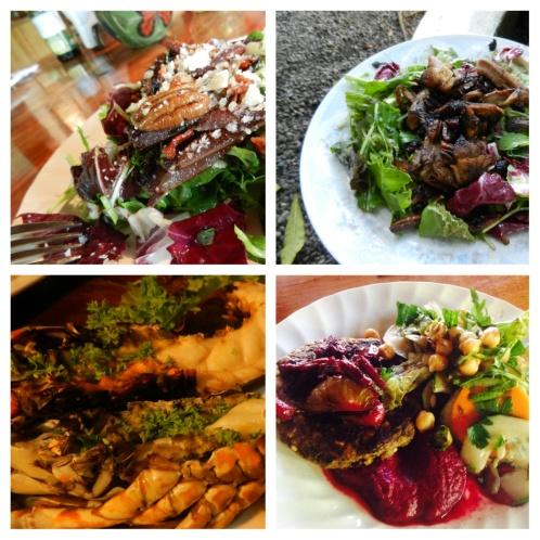 Organic gourmet meals