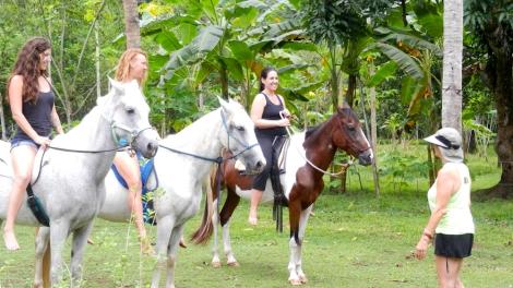 Happy Horse Yogis