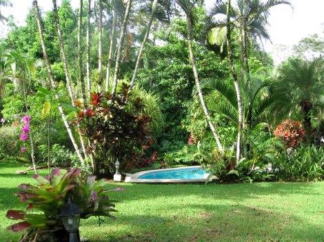 overlooking the tropical gardens