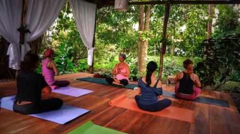 Yoga Practice in the Yoga Sanctuary