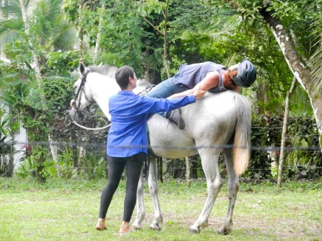 Equine Yoga class with Corinne